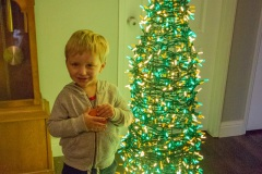 Neil With His Tree